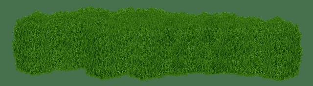 avantages pelouse synthétique