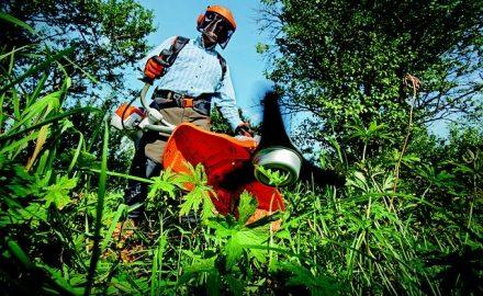 Le tarif horaire d'un jardinier paysagiste